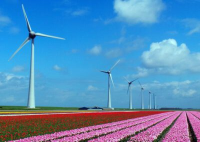 Windpark Noordoostpolder in Zapp Your Planet